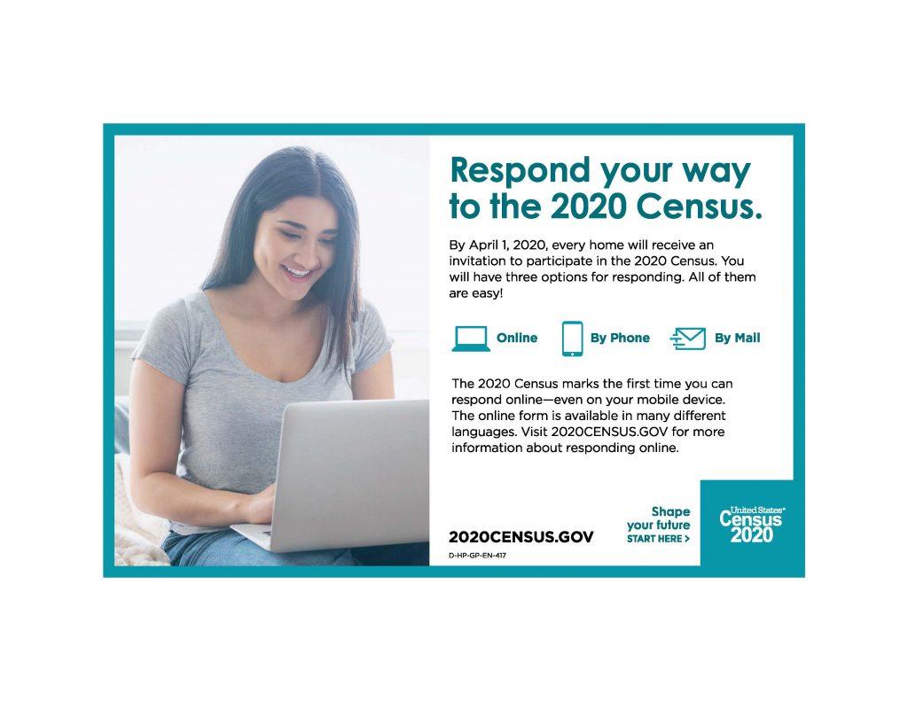 Census Ways to respond
